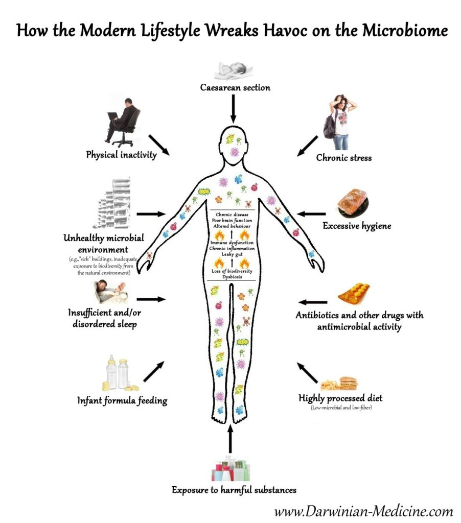 Img src: http://darwinian-medicine.com/wp-content/uploads/2015/07/modern-lifestyle-microbiome.jpg