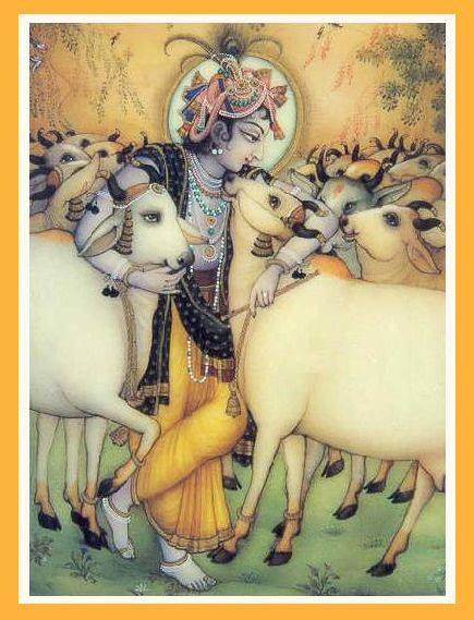 Gau Krishna - inseparable