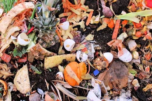 food-waste img src: http://cdn.modernfarmer.com/wp-content/uploads/2013/09/food-waste-sidebar-pic.jpg