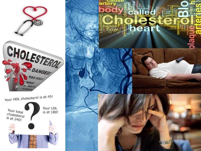Stress / Body posture link to cholesterol level
