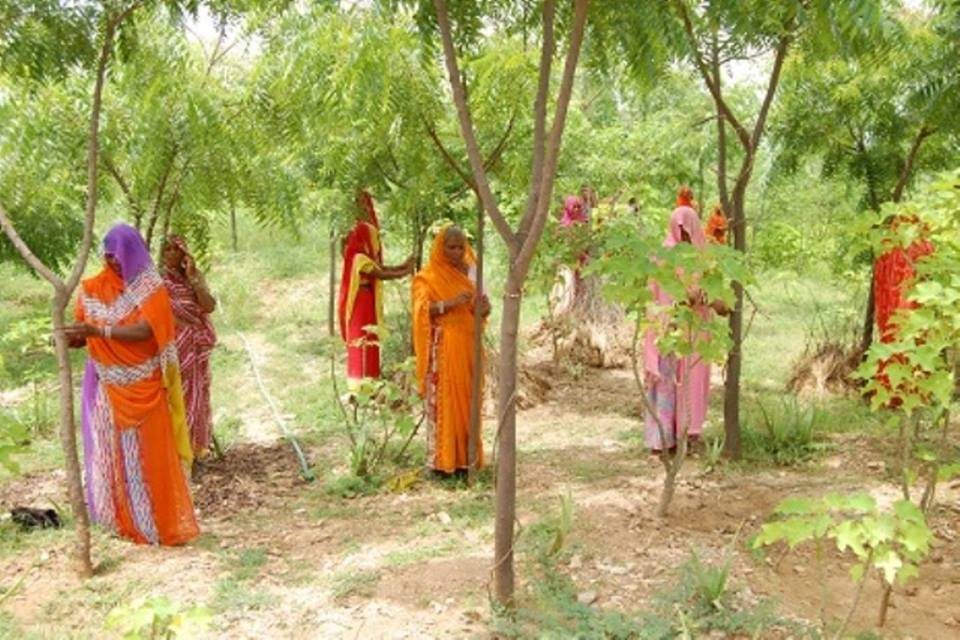 Sva-dharma, Kula-dharma,gram-dharma