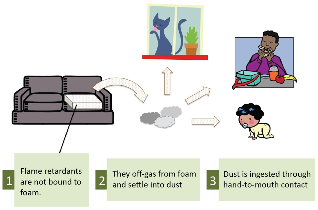 Flame Retardant and Child Development http://greensciencepolicy.org/wp-content/uploads/2013/12/health-environment-FR-exposurebrevity.png