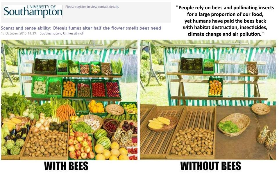 World without bees