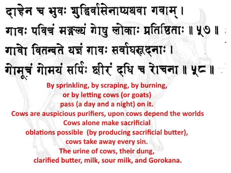 Vishnu Smriti Chapter 23