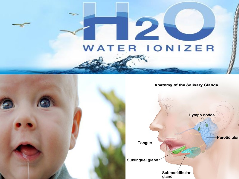 Drinking Water and Role of Saliva