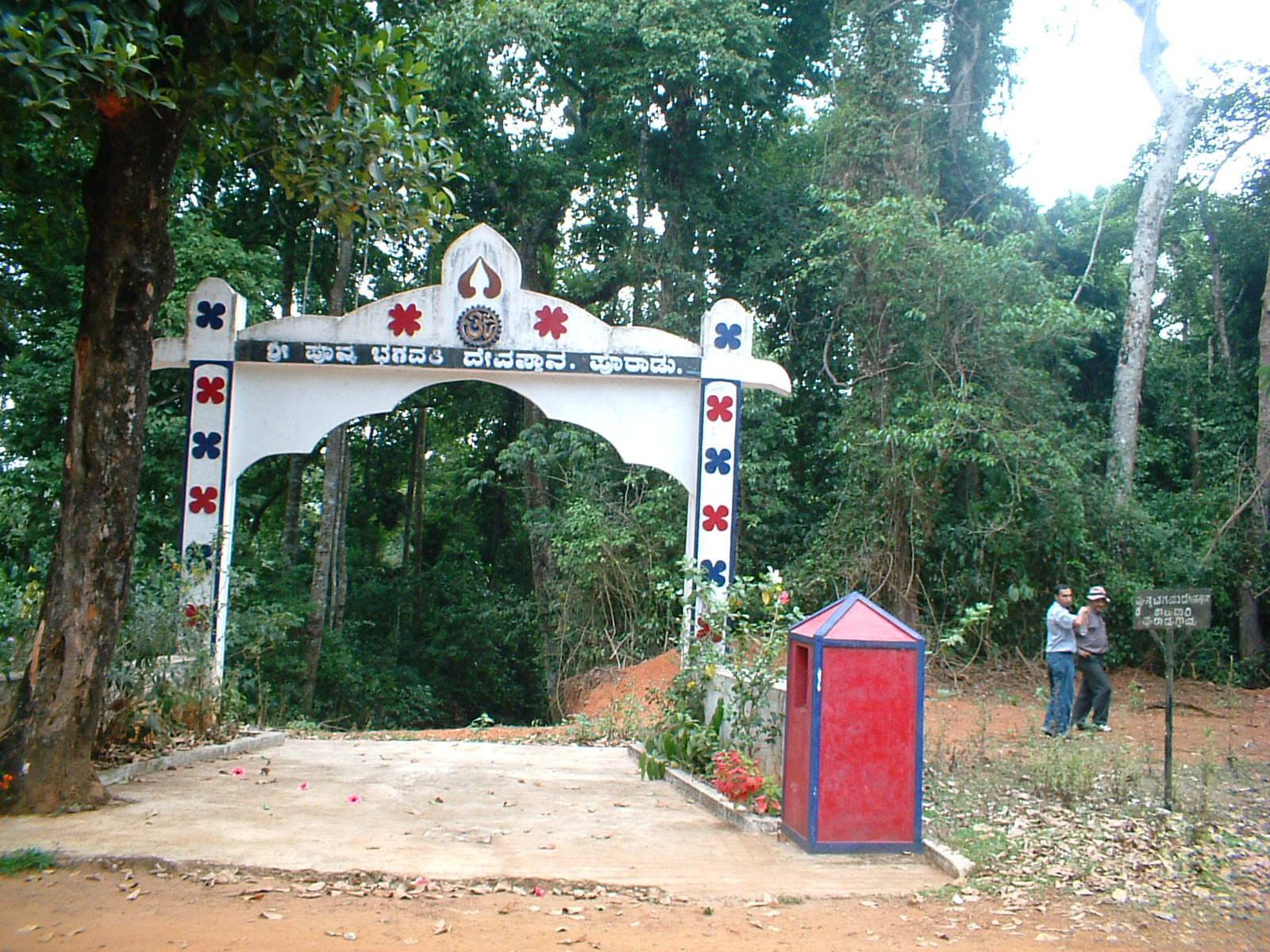 sacred-forest-grove-in-kodagu-south-india