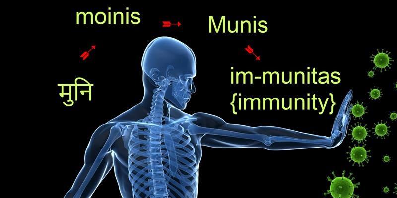 muniimmunity