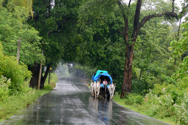 Monsoon_in_south_india