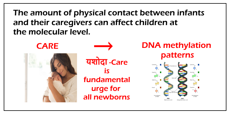 DNA Care