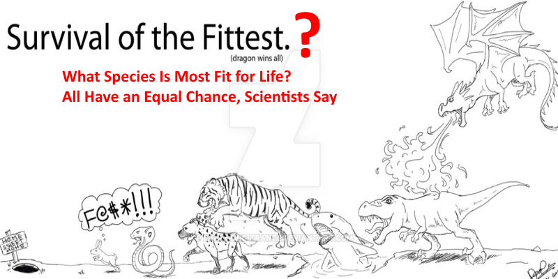 Survival Of Fittest >> Debunking Survival Of The Fittest Delusion Prachodayat