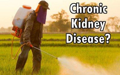 pesticides_kidney_disease-400x250